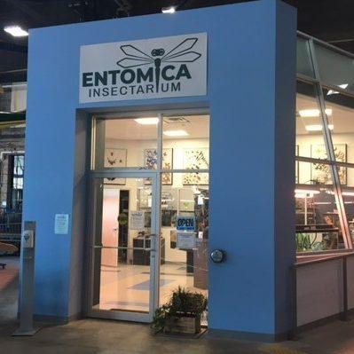 Entomica Insectarium